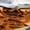 Bangladesh Leather Industry