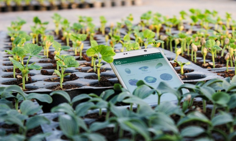 AgroTechnology in Bangladesh