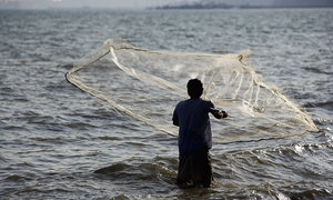 Bangladesh Fisheries Sector - Growth Prospects and Opportunities